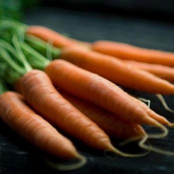 Cenoura orgânica
